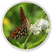 Florida Butterfly Round Beach Towel