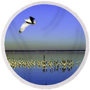 Round Beach Towel featuring the photograph Flying Solo by Clayton Bruster