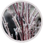 Frosty Coral Maple Round Beach Towel by Mick Anderson