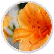 Round Beach Towel featuring the photograph Garden Lily by Davandra Cribbie