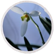 Giant Snowdrop Round Beach Towel