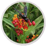 Giant Wasp Round Beach Towel
