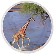 Giraffe Crossing Stream Round Beach Towel