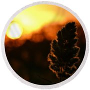 Glowing Leaf Round Beach Towel by Zawhaus Photography