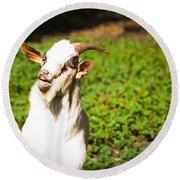 Goat Smiles Round Beach Towel