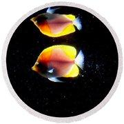 Golden Fish Reflection Round Beach Towel