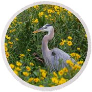 Round Beach Towel featuring the photograph Great Blue Heron In The Flowers by Myrna Bradshaw