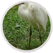 Round Beach Towel featuring the photograph Great White Heron by Myrna Bradshaw