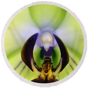 Round Beach Towel featuring the photograph Green Orchid Macro by Clayton Bruster