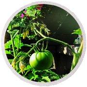 Green Tomatoes Round Beach Towel
