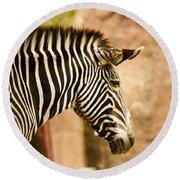 Grevys Zebra Round Beach Towel