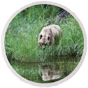 Grizzly Bear And Reflection On Prince Rupert Island Canada 2209 Round Beach Towel