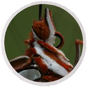 Round Beach Towel featuring the photograph Gulf Fritillary Butterfly Portrait by Daniel Reed