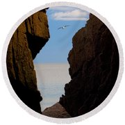 Gulls Of Acadia Round Beach Towel by Brent L Ander