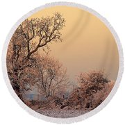 Round Beach Towel featuring the photograph Frost 2 by Linsey Williams
