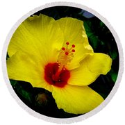 Round Beach Towel featuring the photograph Hawaiian Yellow Hibiscus by Athena Mckinzie