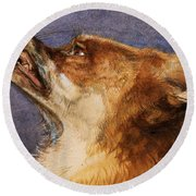 Head Of A Fox Round Beach Towel