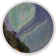 Heart Of The Tide Pool Round Beach Towel by Mick Anderson