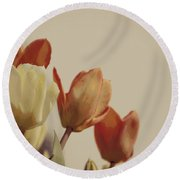 Round Beach Towel featuring the photograph Heavenly Glow by Marilyn Wilson