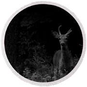 Hello Deer Round Beach Towel by Cheryl Baxter