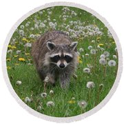 Hey What You Got There Round Beach Towel by Alyce Taylor