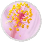 Hibiscus In Pink And Yellow Round Beach Towel by Anne Rodkin