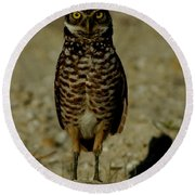 Hoo Are You? Round Beach Towel