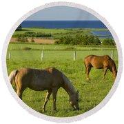 Horses Grazing, Seaview, Prince Edward Round Beach Towel