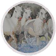 Horses Thru Water Round Beach Towel