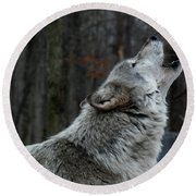 Howling Tundra Wolf Round Beach Towel by Richard Bryce and Family