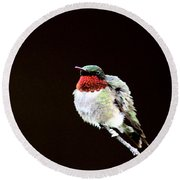 Hummingbird - Ruffled Feathers Round Beach Towel