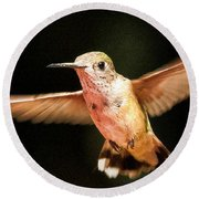 Round Beach Towel featuring the photograph Hummingbird  by Albert Seger