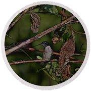 Hummingbird Waiting For Dinner Round Beach Towel by EricaMaxine  Price