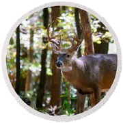Round Beach Towel featuring the photograph Hunters Dream 10 Point Buck by Peggy Franz