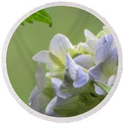Round Beach Towel featuring the photograph Hydrangea Blossom by Katie Wing Vigil