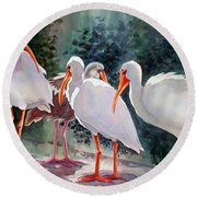 Ibis - Youngster Among Us. Round Beach Towel