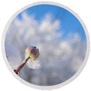 Iced Dogwood Round Beach Towel