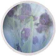 Iris In The Spring Rain Round Beach Towel by Diane Schuster