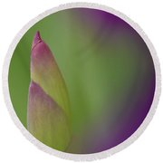 Iris-istible 1 Round Beach Towel