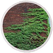 Round Beach Towel featuring the photograph Ivy Covered Window by Gary Slawsky