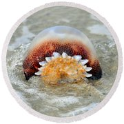 Jelly In A Jam Round Beach Towel
