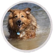 Jesse Round Beach Towel by Jeannette Hunt