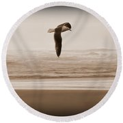 Round Beach Towel featuring the photograph Jonathon by Jeanette C Landstrom
