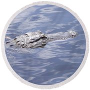 King Of The Everglades Round Beach Towel