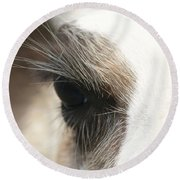 Round Beach Towel featuring the photograph Lama by Heidi Poulin