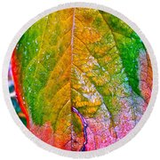 Leaf 2 Round Beach Towel by Bill Owen