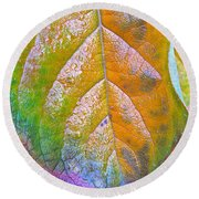 Leaf Round Beach Towel by Bill Owen