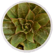 Leaf Star Round Beach Towel