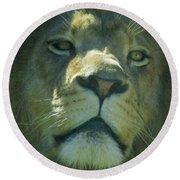 Leo,lion Round Beach Towel