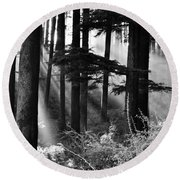 Round Beach Towel featuring the photograph Light Through The Trees by Don Schwartz